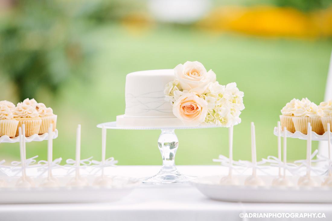 Sugar Sweet Cake Company Gourmet Cupcakes Wedding Event Cakes